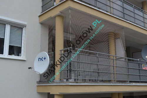 bezpieczny-balkon-dla-kota.jpg
